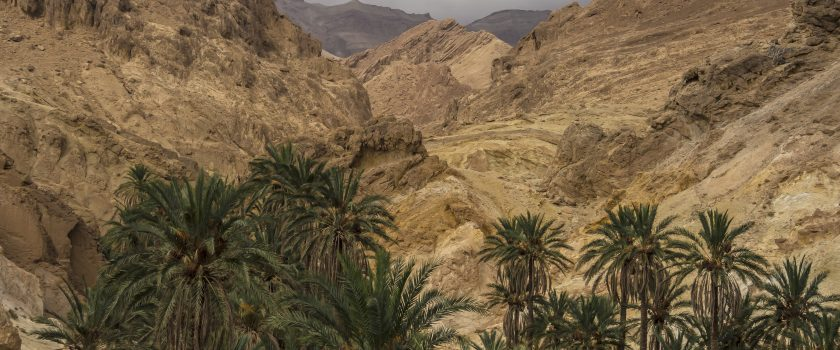 Resoconto fotografico dell'escursione in Tunisia (27 settembre – 5 ottobre 2017)