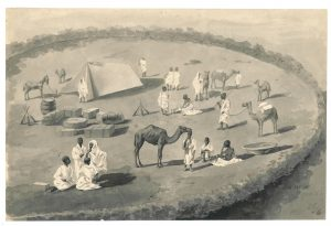 disegni 1891_1