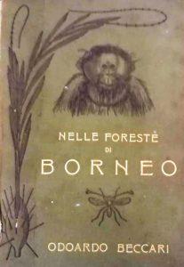 Nelle foreste di Borneo 1921