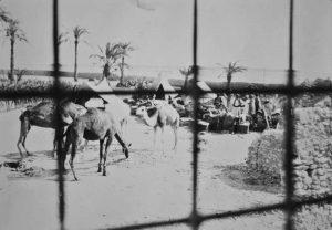 Carovanieri della Missione fotografati dall'interno della prigione di Sokna - Foto Sanfilippo