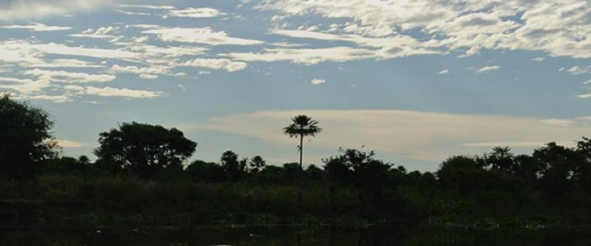 (Italiano) Il Chaco ieri e oggi. Paesaggi, volti, oggetti Chamacoco, Caduveo, Ayoreo
