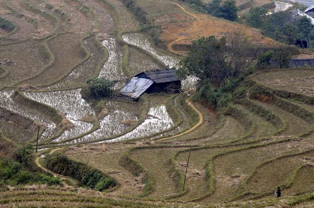 I paesaggi terrazzati: espressione dell'eredità culturale e sociale dell'umanità