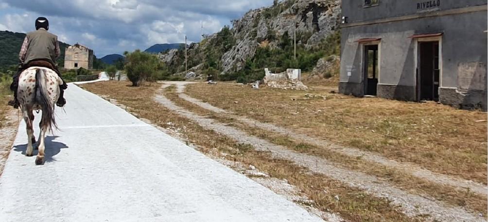 Paesaggi ferroviari per la sostenibilità del territorio e losviluppo locale – WEBINAR – mercoledì 24 febbraio 2021 – Ore 10.00