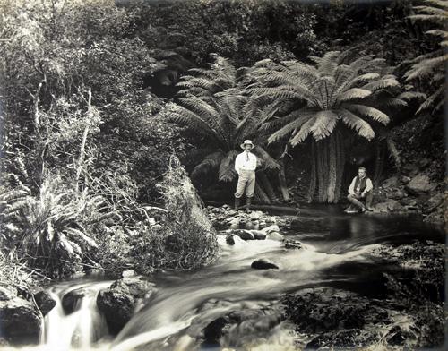 Mercoledì Fotografico –  L'Australia profonda negli scatti di Charles Henry Kerry